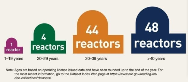 Nuclear reactor age